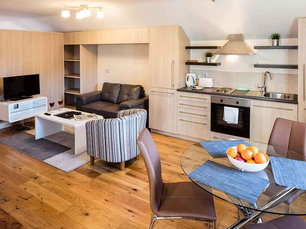 Baggot Rath House, Open Plan Apartments